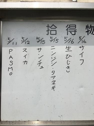 IMG_9238.JPG