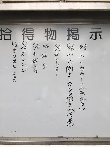 IMG_9447.JPG