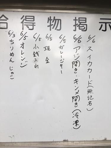 IMG_9503.JPG
