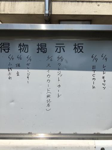IMG_9547.JPG