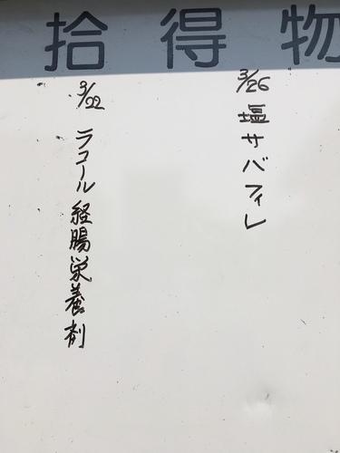 IMG_3590.JPG